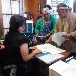 Destrucción de Alerces Milenarios: Comunidades Mapuche entregan observaciones contra proyecto carretera La Unión – Corral