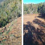 Proyectos inmobiliarios siguen arrasando y ponen en peligro el abastecimiento de agua a vecinos de Kürawich (Bonifacio, Valdivia)